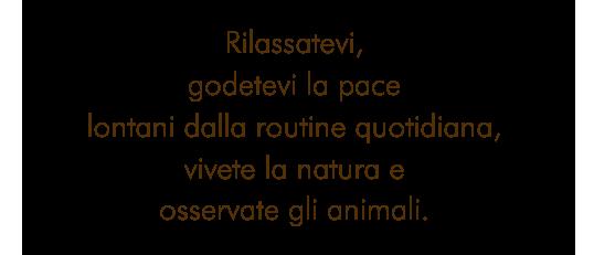 Rilassatevi, godetevi la pace lontani dalla routine quotidiana, vivete la natura e osservate gli animali.